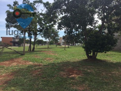 Lote, 447 m2